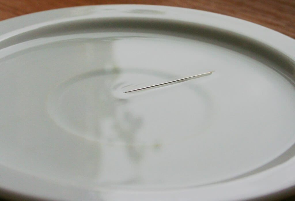 Magnetic needle as compass